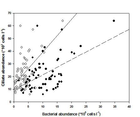 生态系统动力学    主要进行浅水湖泊微食物网的结构